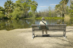 Person sitting on a bench admiring the spring nature in Agua Canyon, Tucson, AZ Royalty Free Stock Images