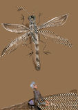 Person sitting at a table. Looking up a t a huge dragonfly on the ceiling Royalty Free Stock Photography