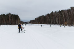 Person skiing in winter forest. At day Royalty Free Stock Photography