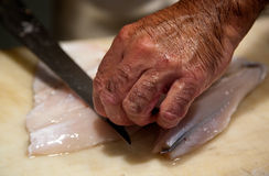 Person slicing raw fish Royalty Free Stock Photo