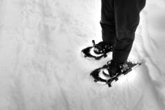 Snowshoeing in the Winter Snow. Person snowshoeing in the winter snow stock photos