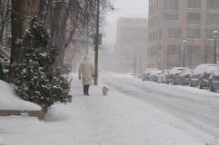 Person som går en liten hund på en koppel på en stadsgata på en snöig dag arkivfoton