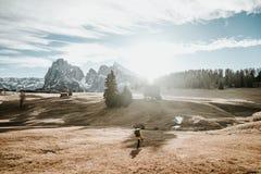 Person som går på ett fält i bergen Royaltyfria Bilder