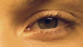 Person som lider syndrom för torrt öga och blinkar, oftalmologi, extrem närbild lager videofilmer