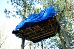 Person som protesterarträdcampingplats i skogsmarker, UK Royaltyfri Fotografi