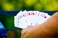 Person som spelar kort med grön bakgrund Arkivbild