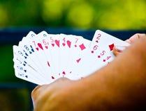 Person som spelar kort med grön bakgrund Royaltyfri Fotografi