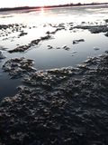 Ice at sunset of the day royalty free stock photos