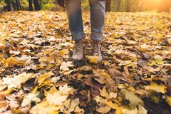 Person standing on fallen leaves Royalty Free Stock Photo