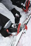 Person strapping on snowboard. Stock Photo