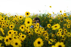 Person in Sunflower Field during Daytime Stock Image
