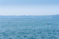 Person swimming alone in big lake Royalty Free Stock Photography
