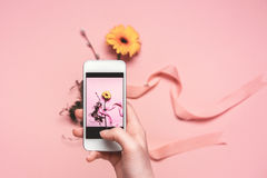 Person taking photo of flower with ribbon on smartphone. springtime concept Stock Images