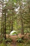 2 Person Tent Wooded Campsite Oxbow regionaler Park Lizenzfreie Stockbilder