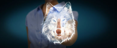 Person touching fractal endangered wolf illustration 3D renderin. Person touching with his finger fractal endangered wolf illustration 3D rendering Stock Photos