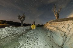 Dry trees at night. Person between two dry trees at night Royalty Free Stock Photos