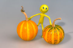 Person with two pumpkins. The Photo smiling person (the doll from plastic arts) with two pumpkins Stock Photos