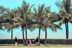 A person is using a mobile phone camera under coconut trees. Stock Photos