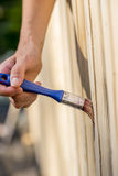Person varnishing an exterior garden fence stock images