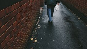 Person Walking on Black Asphalt Pathway Between Brown Brick Wall Royalty Free Stock Images