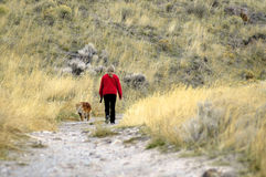 Person walking with dog Royalty Free Stock Photos