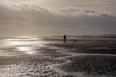 Person walking dog at stormy day at beach Stock Photo