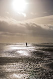 Person walking dog at stormy day at beach stock image