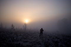 Person walking in foggy field at sunset Stock Photos