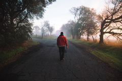Person Walking on Foggy Road Stock Photo