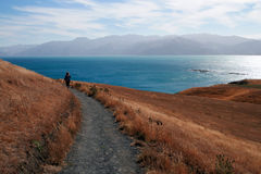 Person walking on a path in Kaikoura, New Zealand Royalty Free Stock Images