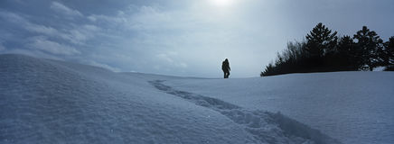 Person Walking In Snow Stock Image