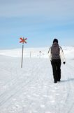 Person walking in snow Royalty Free Stock Images
