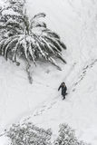 A person walking on snow in winter Royalty Free Stock Image