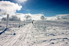 Person Walking Through Snowy Footpath in Sunny Day. Jeseniky Mountains, Czech Republic Royalty Free Stock Photos