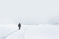 Person walking on snowy winter landscape Royalty Free Stock Images