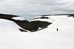 Person Walking Tundra in Svalbard Stock Image