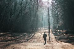 Person walking in cold morning landscape. Person walks on beautiful countryside landscape at sunny cold morning royalty free stock photo