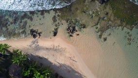 Person wanders along yellow sandy beach near buildings. Person silhouette wanders along yellow sandy beach near buildings surrounded by green palm trees vertical stock video