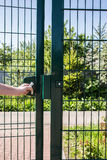 Person wants get in on playground through the little gate of welded wire. Person wants get in on playground through the little gate of the welded wire mesh is stock photos