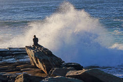 Person watching wave breaks Royalty Free Stock Photo