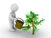 Person watering dollar tree. 3d person is watering small tree with dollar signs Royalty Free Stock Images
