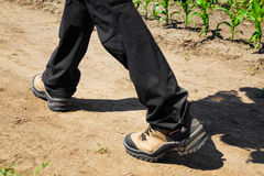 Person wearing black pants and hiking boots. Walking along a dirt path on a sunny day, low angle close up of the lower legs Royalty Free Stock Photo