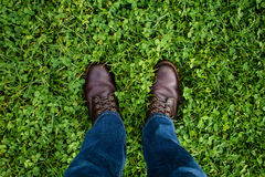 Person Wearing Blue Denim Jeans and Brown Leather Shoes on Green Grass Field Royalty Free Stock Photo