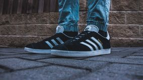 Person Wearing Pair of Black-and-white Adidas Gazelle Royalty Free Stock Images