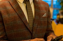 Person Wearing Red and Gray Plaid Suit Jacket Stock Photography