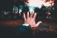Person Wearing Round Analog Watch stock photos