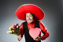 The person wearing sombrero hat in funny concept Royalty Free Stock Image