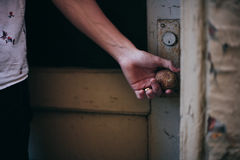 Person in White Shirt Holding a Brass Door Knob Royalty Free Stock Image