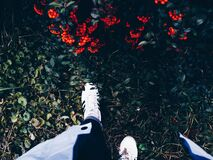 Person in White Sneakers on Green Grass Near Flowering Shrub Stock Photos