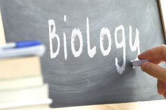 A person writing the word Biology on a blackboard. Stock Photography